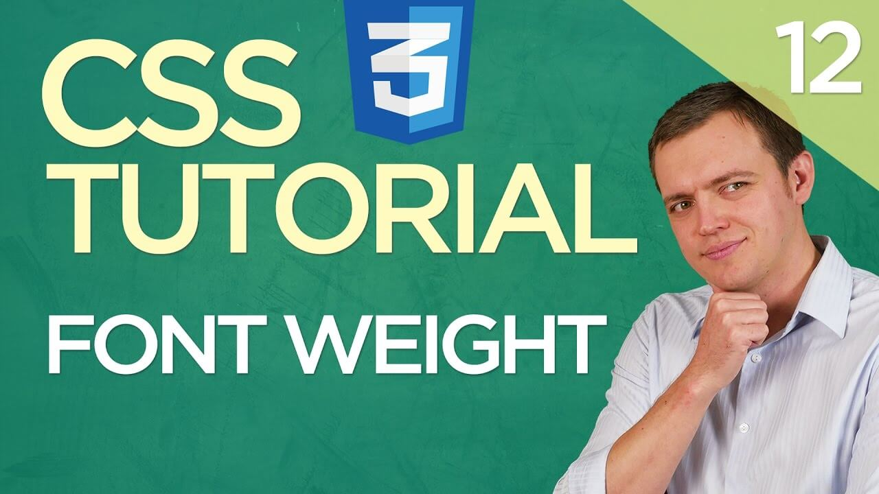 CSS3 Tutorial for Beginners: 12 Modifying Font Weight (Bold)