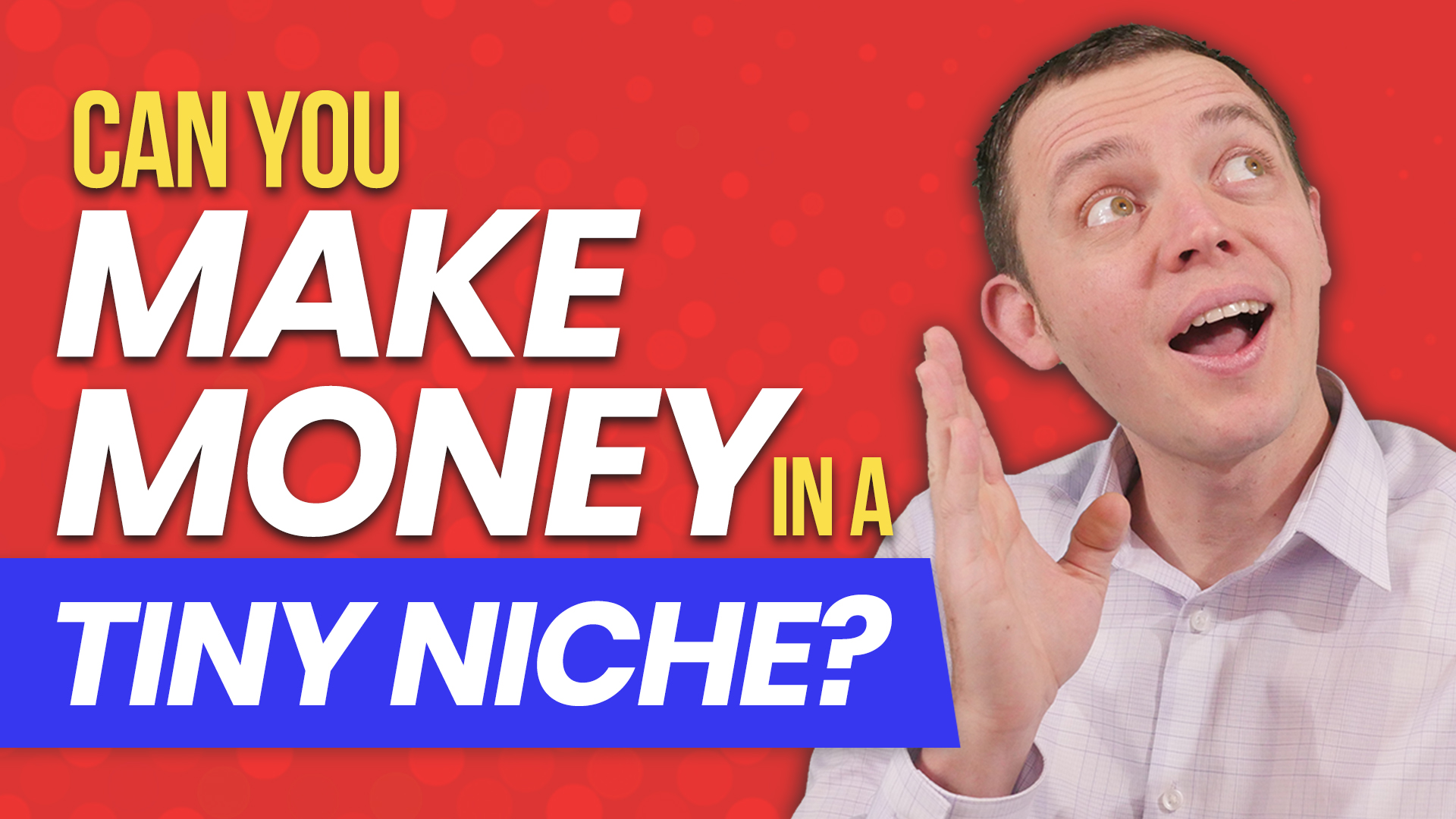 Can You Make Money in a Small or Tiny Niche